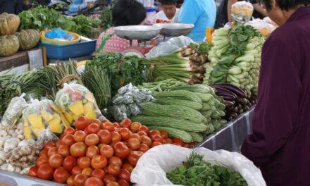 Green schools combat bad diets in Philippines