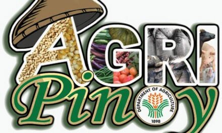 10 provinces, 48 cities, towns lead Agri-Pinoy rice achievers