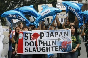 Activists hold dolphin-shaped balloons and banners urging the Japanese government to end dolphin killings, during a protest in front of the Japanese embassy in Manila September 2, 2013. The protest is part of a global movement by animal welfare groups to spread awareness about the slaughter of dolphins and whales, an Earth Island Institute Philippines press statement said. (MNS photo)