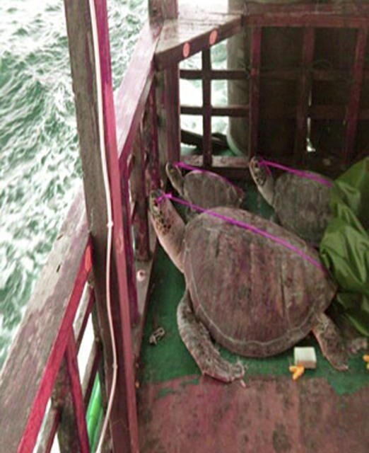De Lima: Trial of Chinese poachers to proceed