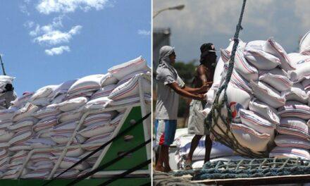 Agri chief: PHL needs to import rice
