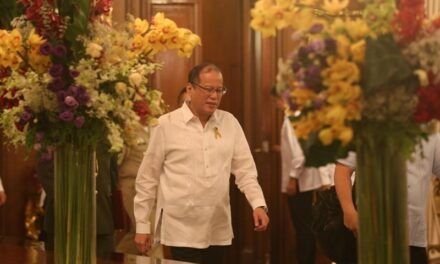 Pro-Aquino alliance hits out at 'enemies of reform,' denies pushing term extension